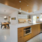 Venice Island Mid Century by Dynan Construction Mgmt (10)