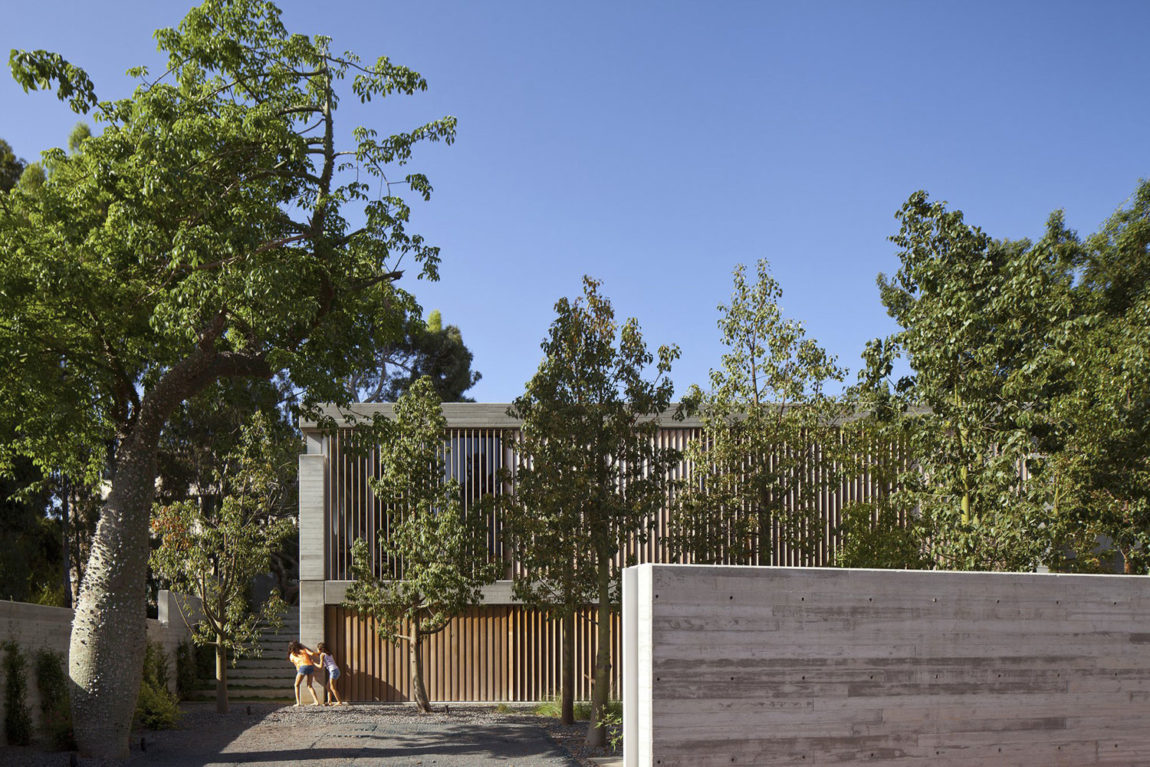 A House for an Architect by Pitsou Kedem Architects (2)