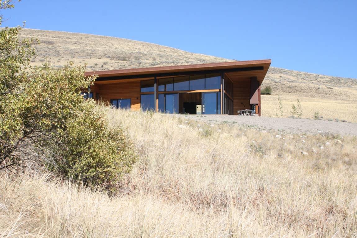 New Caelifera by Johnston Architects (2)