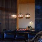 New Caelifera by Johnston Architects (27)