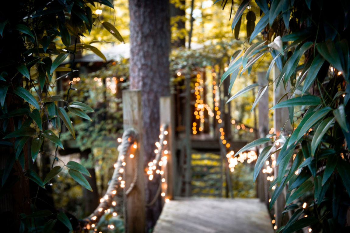 Secluded Intown Treehouse (3)