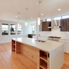 Sustainable House by Dwell Development (14)