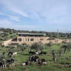 Zgharta Residence by platau (2)