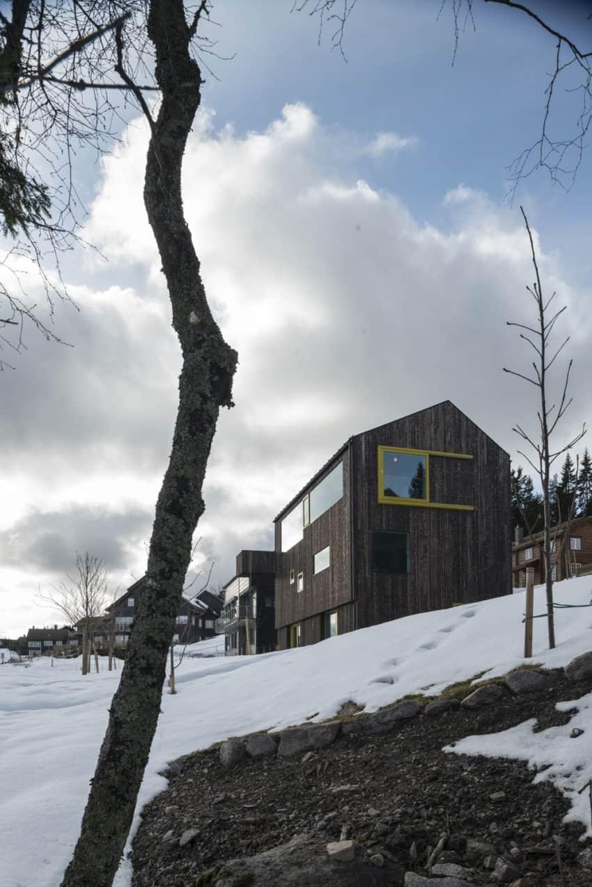 Linnebo House by Schjelderup Trondahl arkitekter (1)