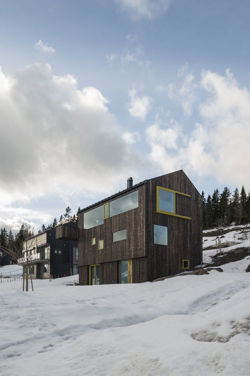 Linnebo House by Schjelderup Trondahl arkitekter (2)