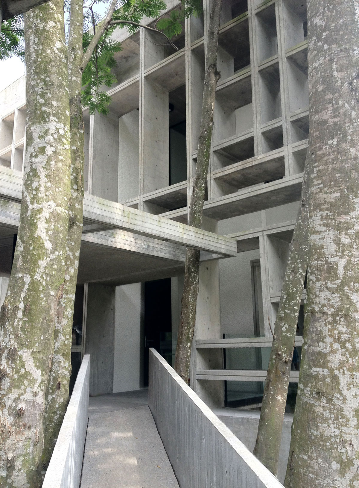 Tropical Box House by WHBC Architects (2)