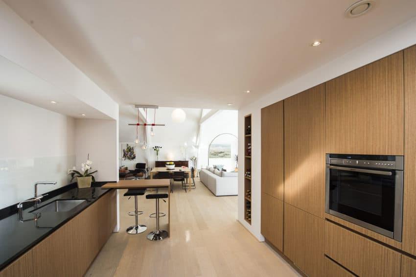 Casa F by PEÑA architecture (8)