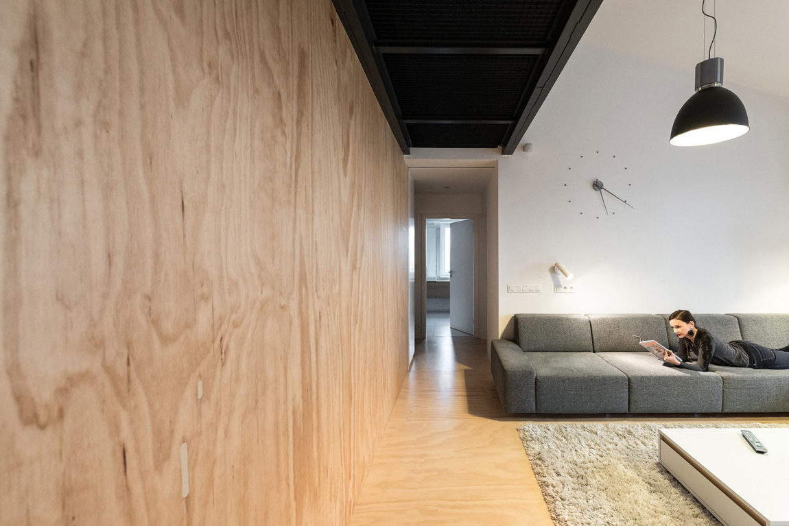 Loft Apartment in Superstructure by RULES architects (2)
