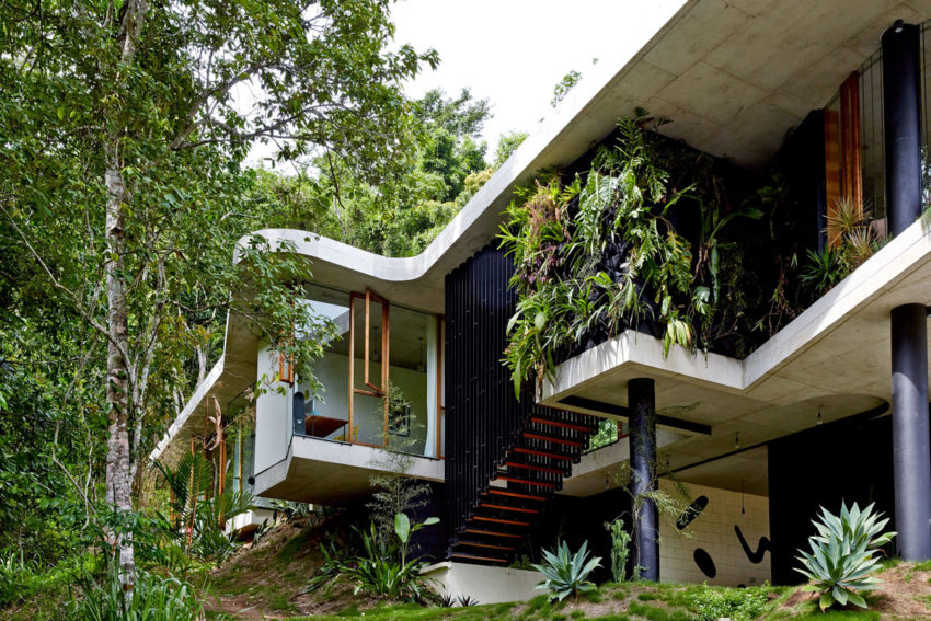 Planchonella House by Jesse Bennett Architect (2)