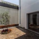 La Casa de los 5 Patios by Almazán Arquitectos Asociados (10)