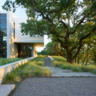 Retrospect Vineyards Residence by Swatt Miers Architects (3)