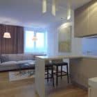 Eugene Meshcheruk Designs Cozy 500-Square-Foot Apartment (1)
