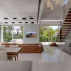 The Hidden House by Israelevitz Architects (7)