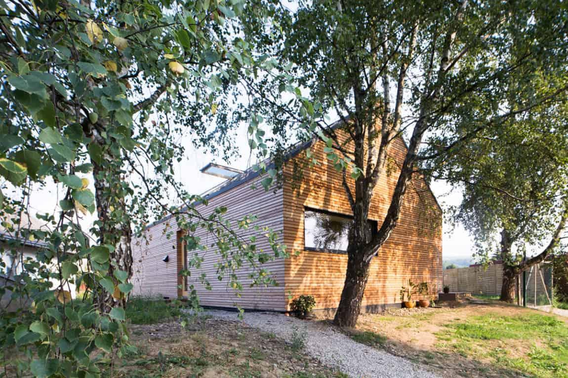 DomT by Martin Boles Architect (2)