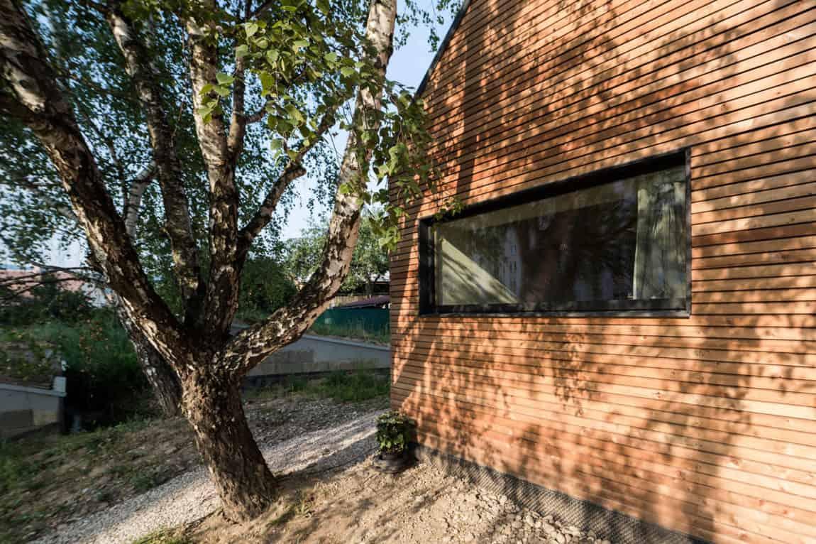 DomT by Martin Boles Architect (4)