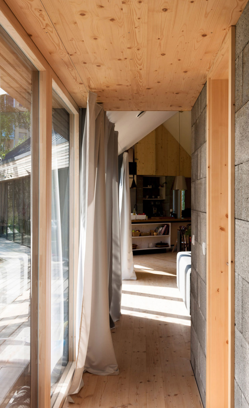DomT by Martin Boles Architect (7)