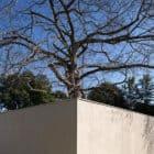 Paineira House by Bloco Arquitetos (6)