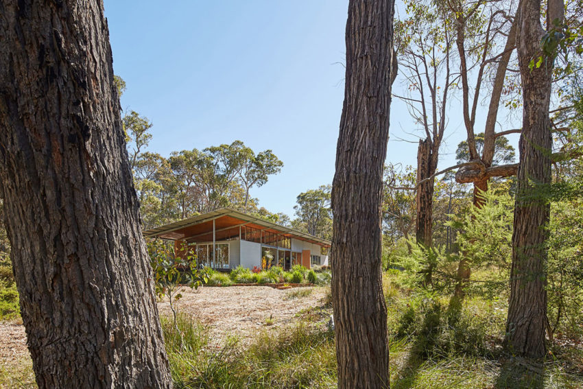 Bush House by Archterra Architects (1)