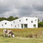 House for a Photographer by Studio Razavi Architecture (1)