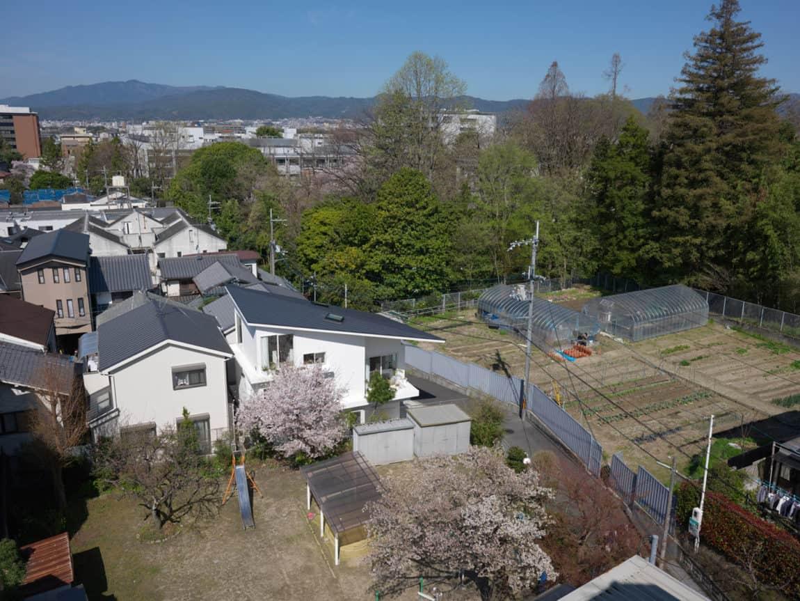 The Corner House in Kitashirakawa by UME Architects (2)