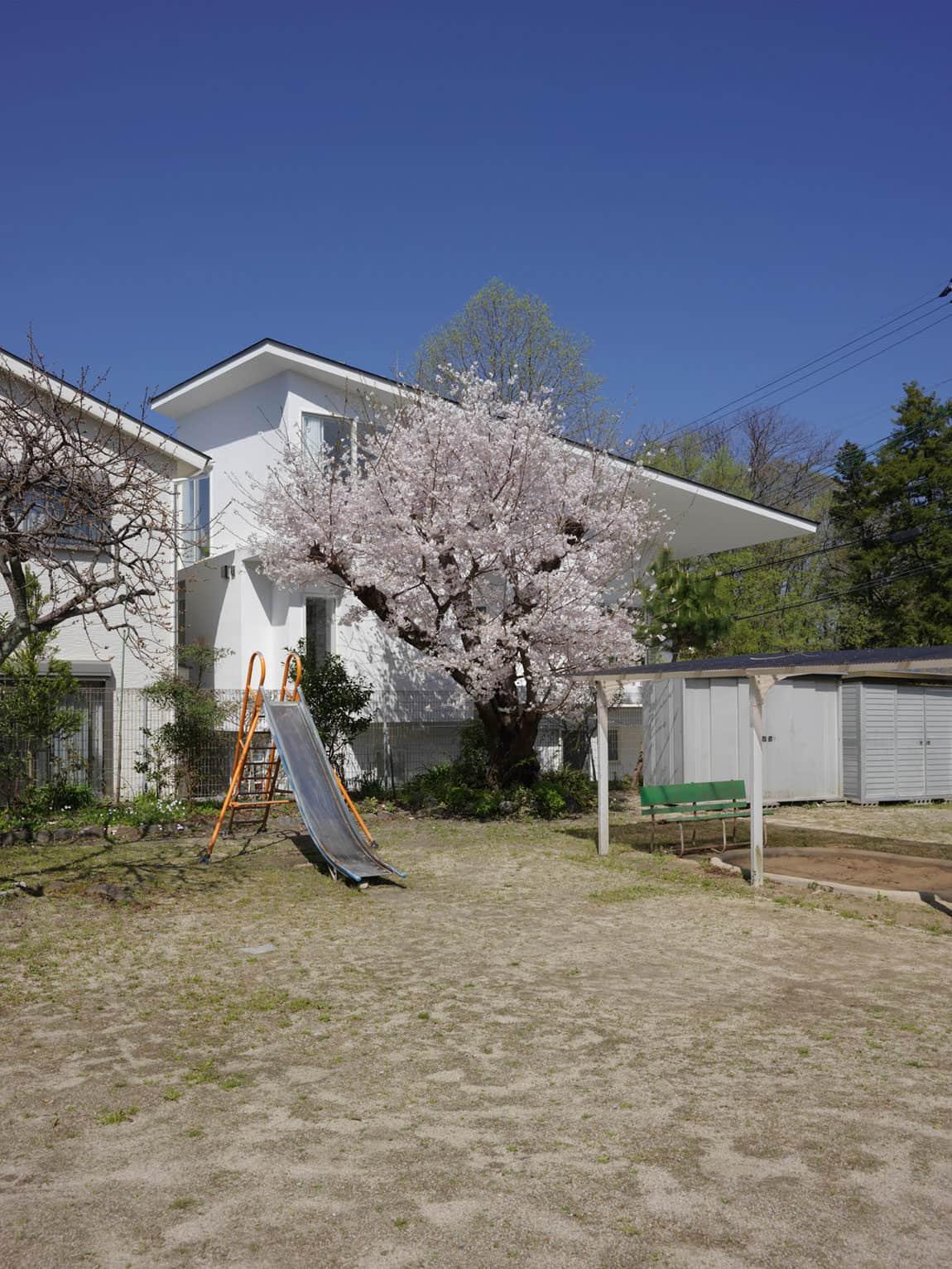 The Corner House in Kitashirakawa by UME Architects (3)
