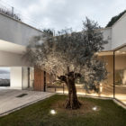 Villa La Madone by A2CM & Ceschia e Mentil Arch (18)