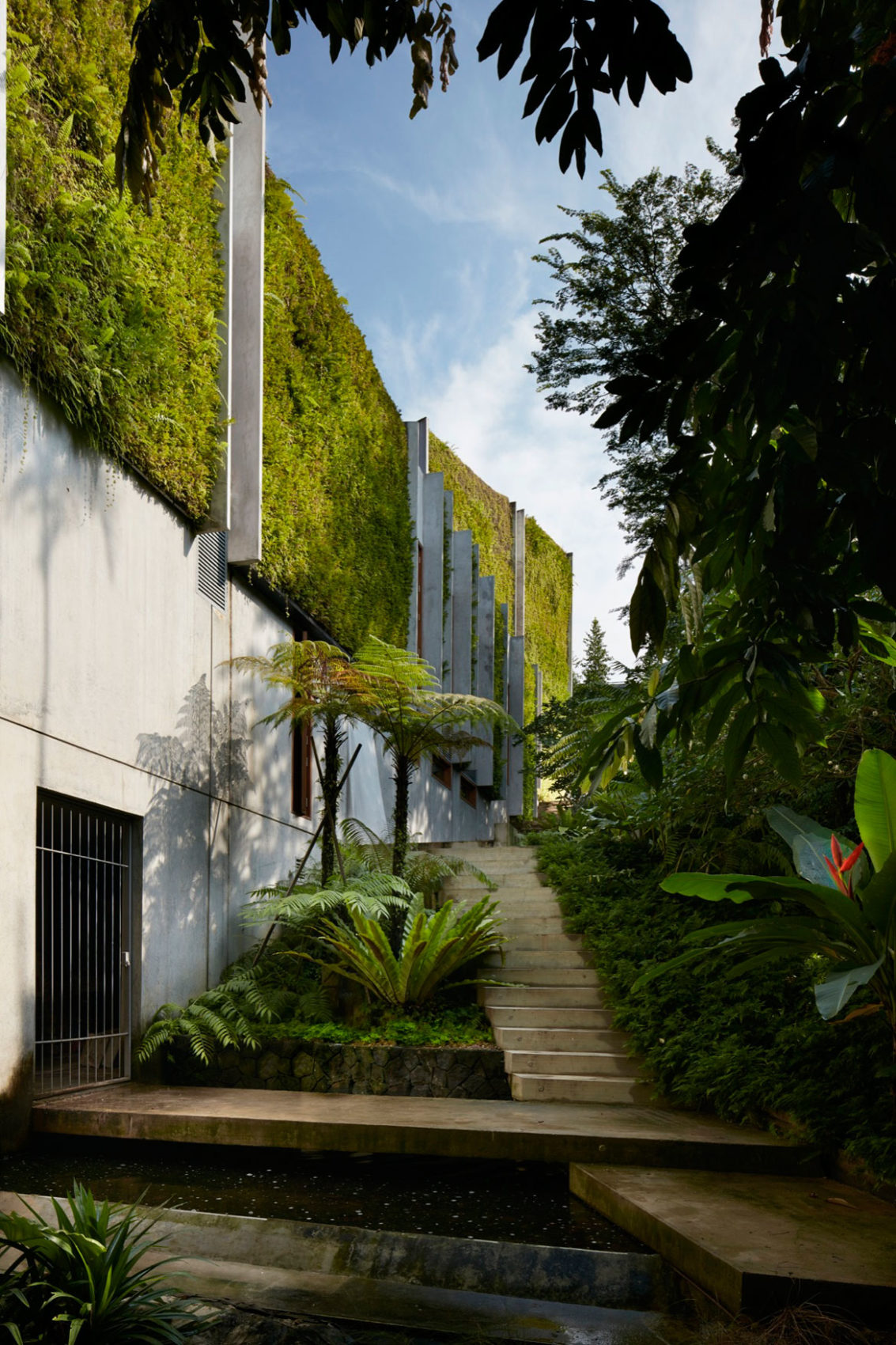 Astrid Hill House by Tsao & McKown Architects (4)