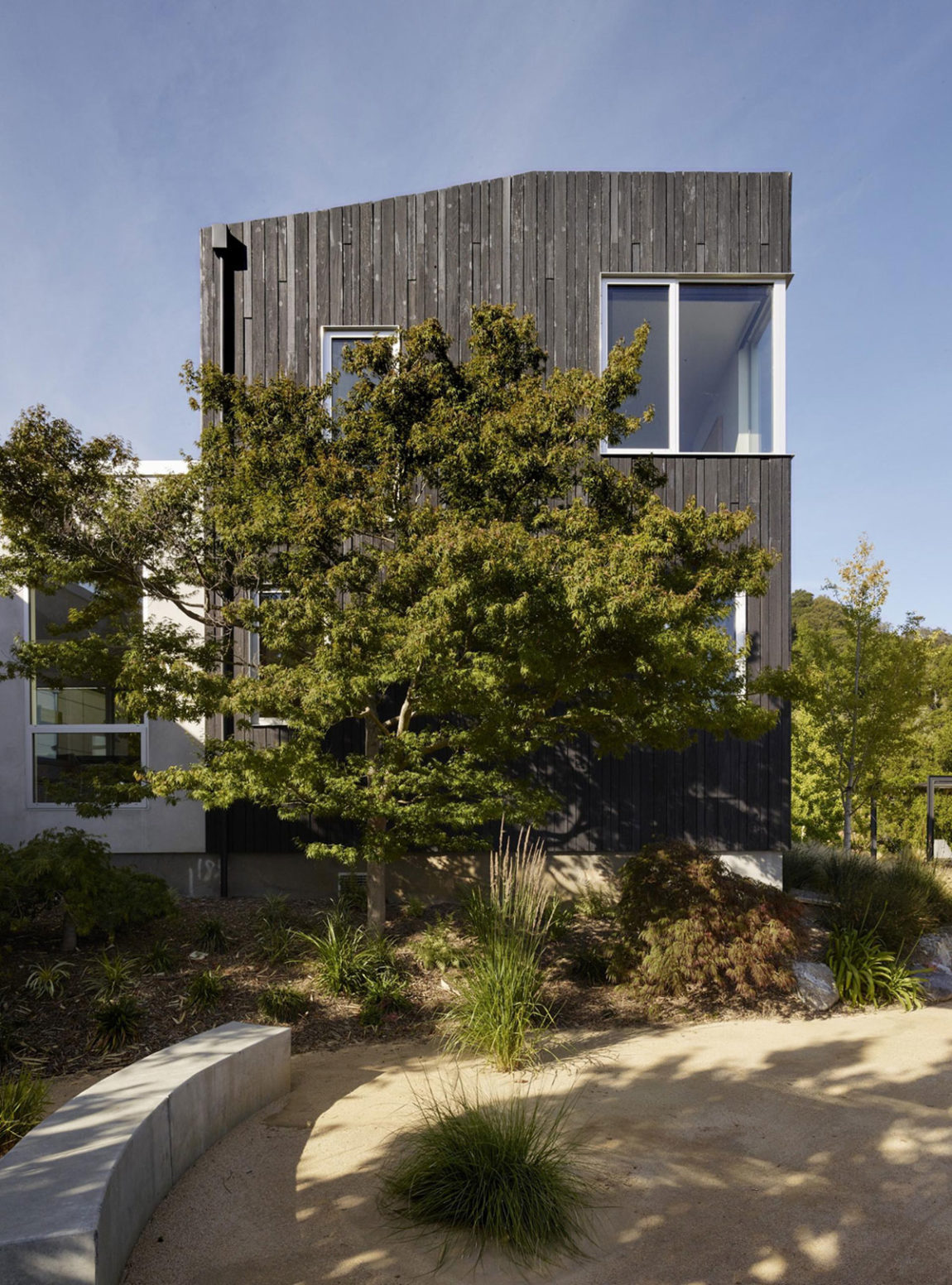 Shou Sugi Ban House by Schwartz and Architecture (1)