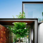 THAT House by Austin Maynard Architects (5)