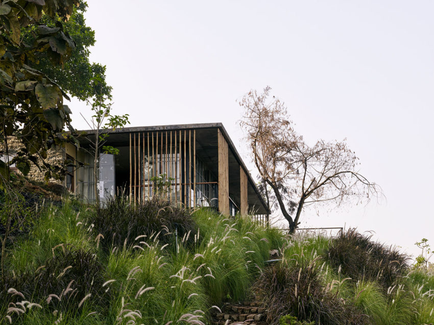 The Riparian House by Architecture BRIO (4)
