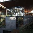 House 1 by Alexis Dornier (5)