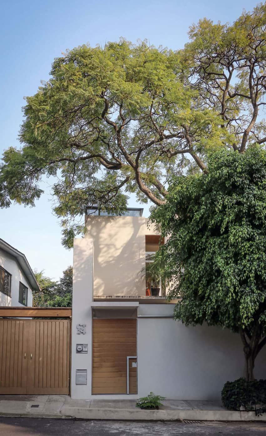 Nirau House by Paul Cremoux Studio (1)