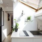 Living Under the Roof by Prisca Pellerin Architecture (7)