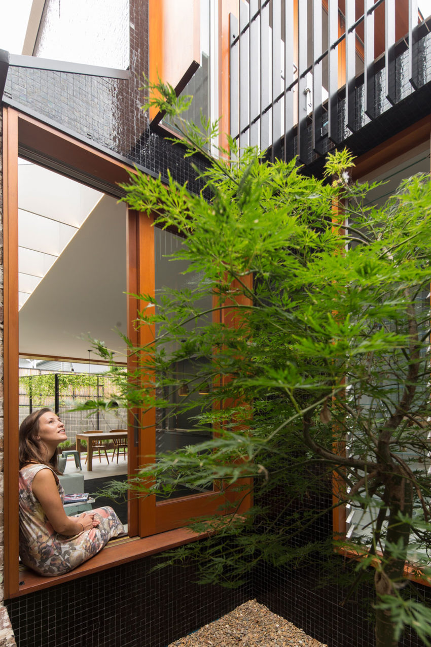 McMahons Point by Carterwilliamson Architects (3)