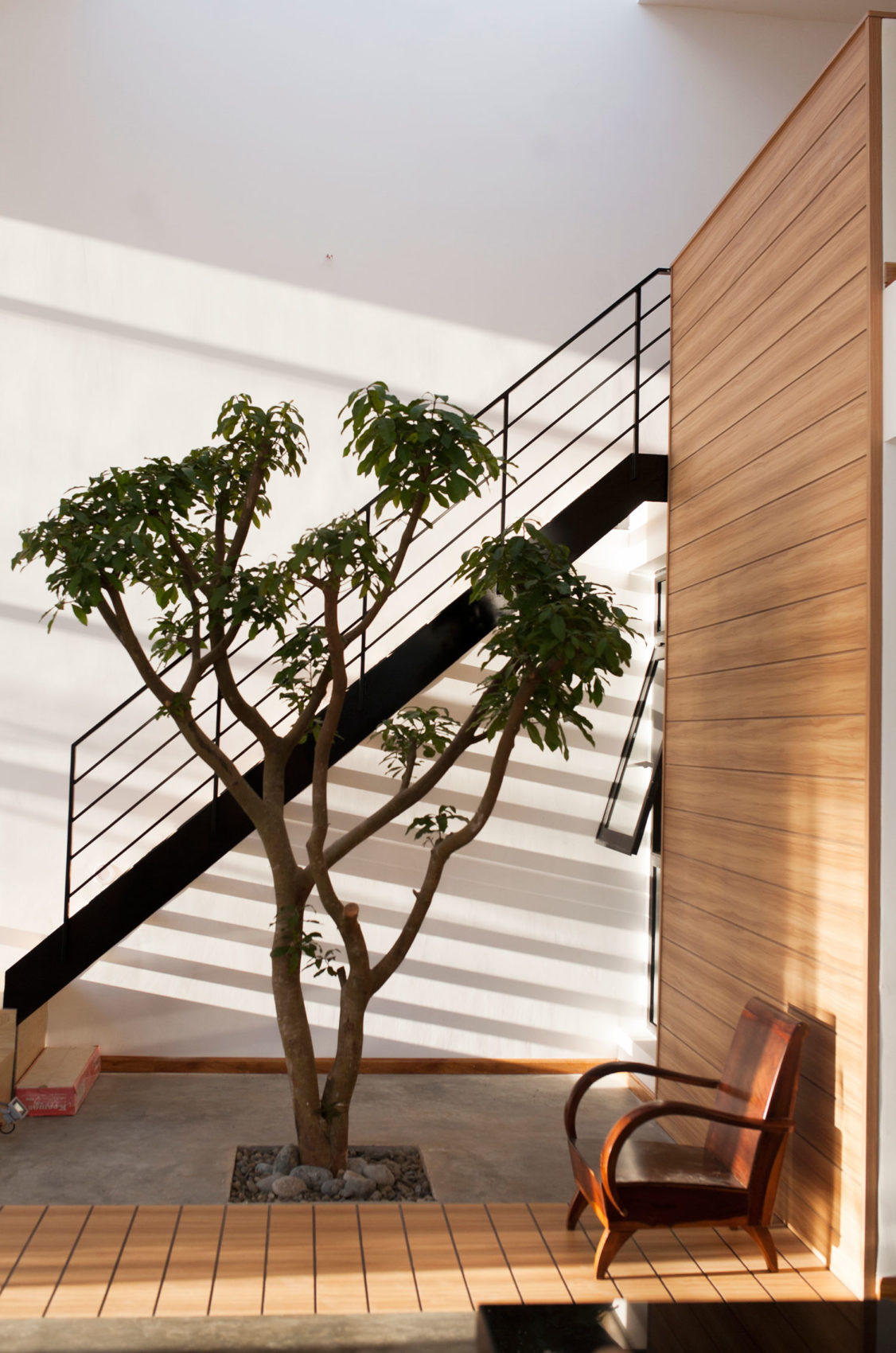Nguyen's House by 7A architecture studio (6)