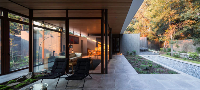 The House and the Trees by Iglesis Arquitectos (4)
