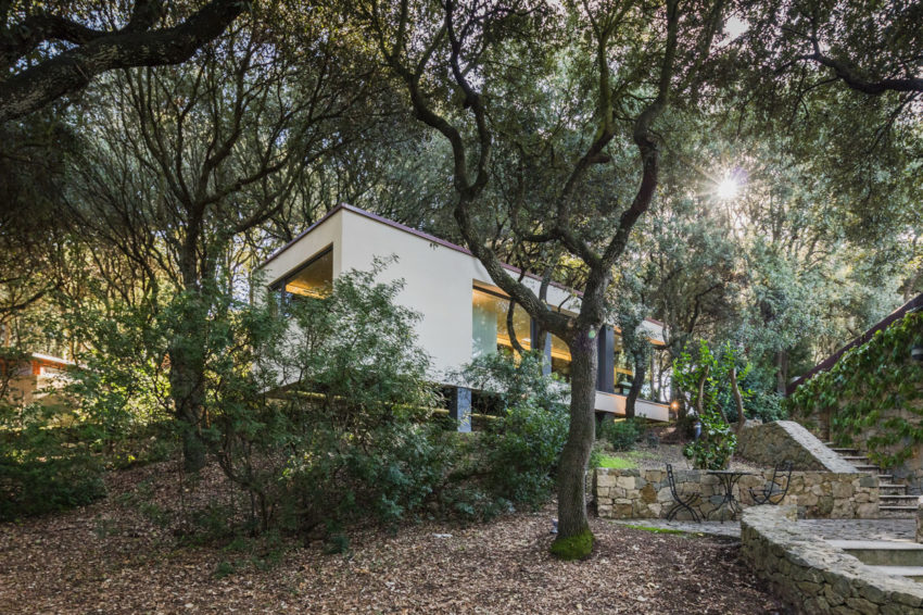 The House in the Woods by OFFICINA29architetti (1)