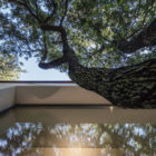 The House in the Woods by OFFICINA29architetti (15)