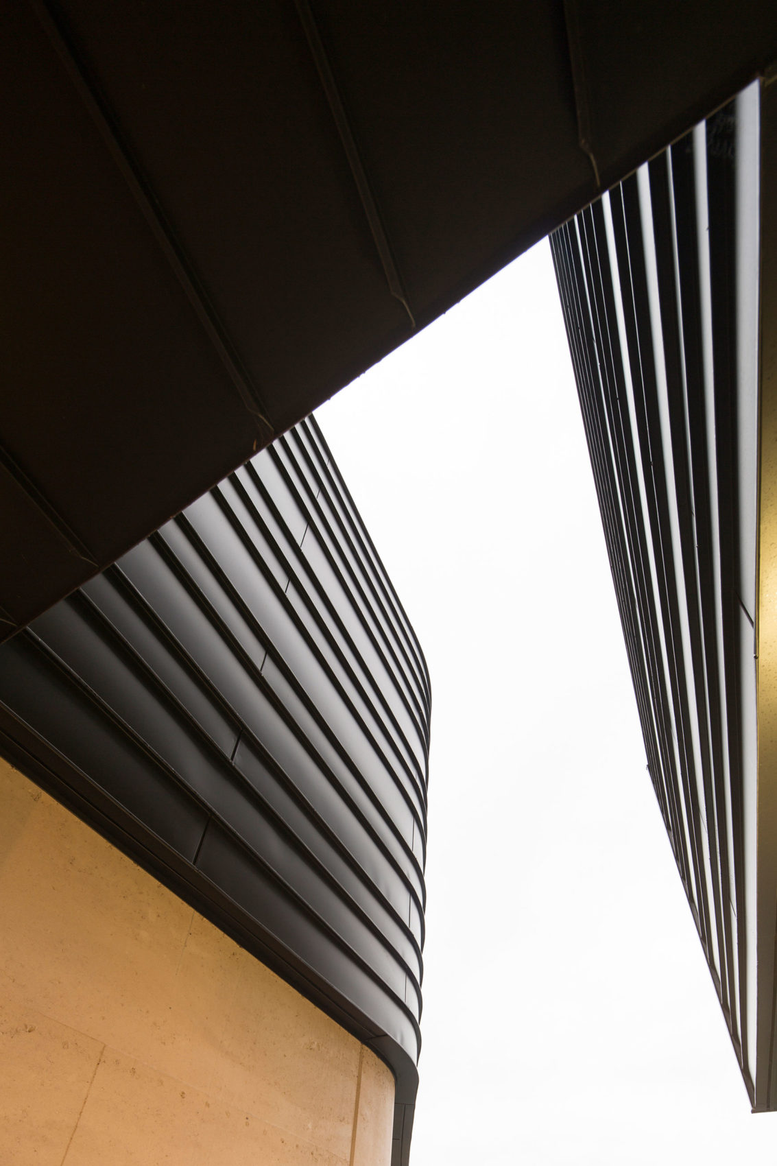 Balmoral House by Fox Johnston Architects (6)