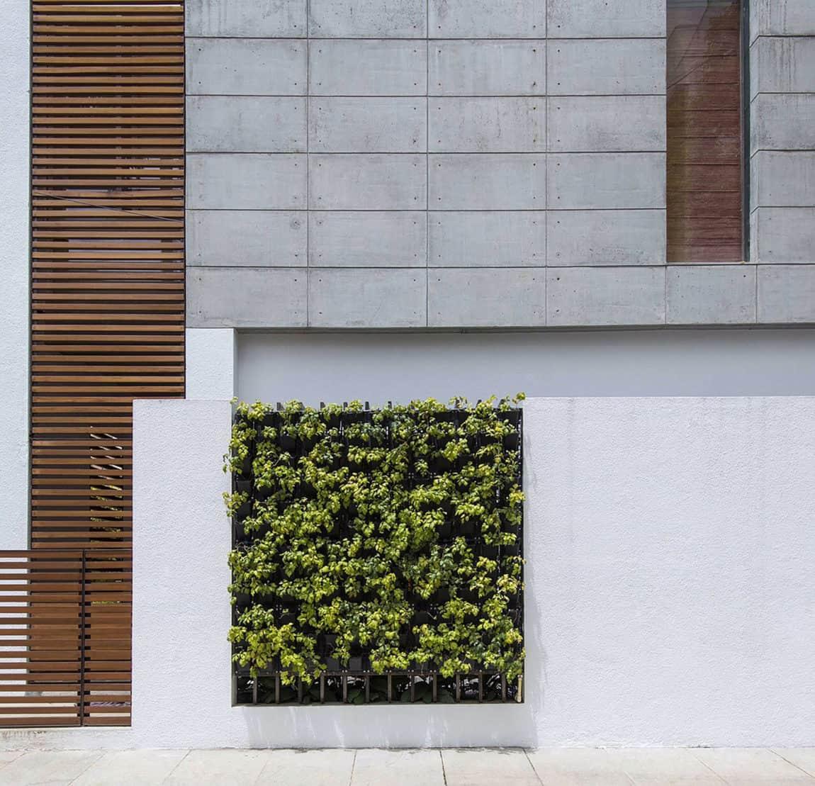 Badri Residence by Architecture Paradigm (3)