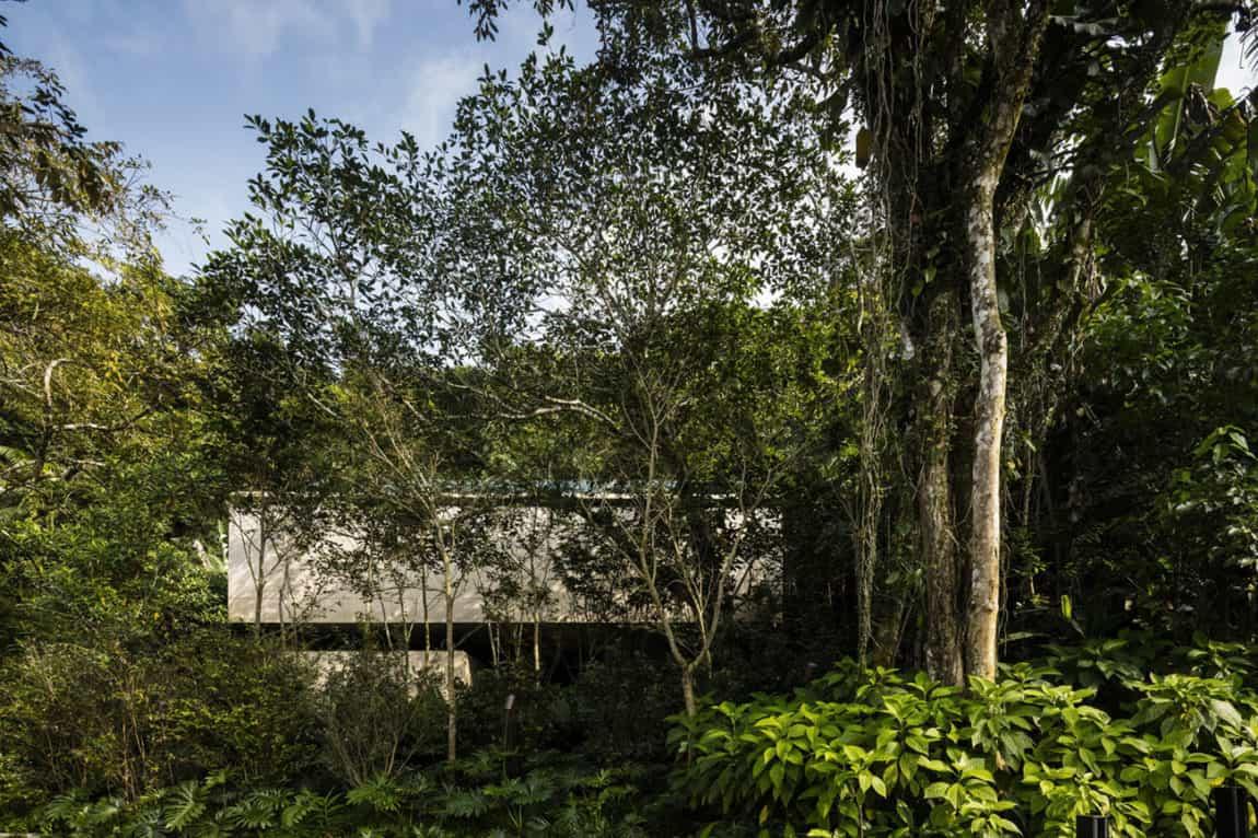 Jungle House by Studiomk27 (5)