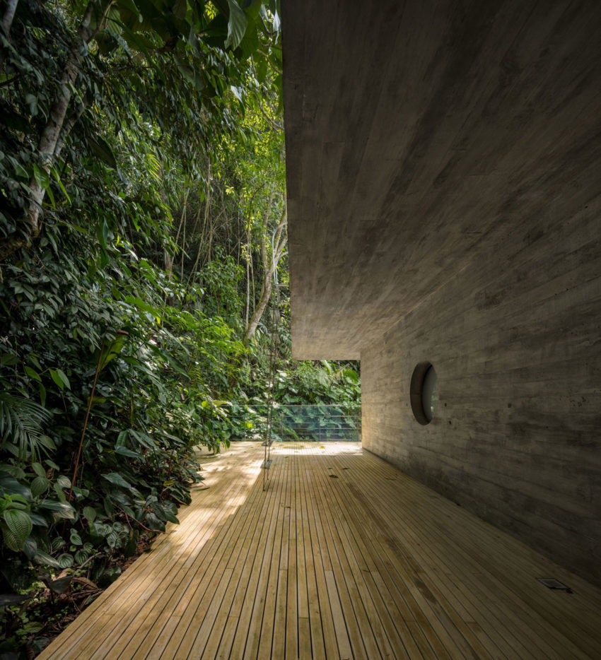 Jungle House by Studiomk27 (12)