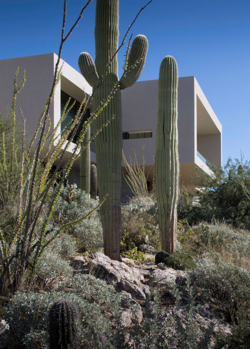 Sabino Springs Estates by Kevin B Howard Architects (5)