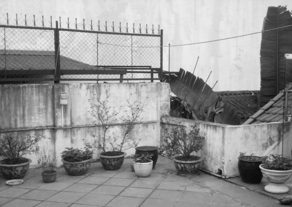 Attic Apartment by Tropikon (1)