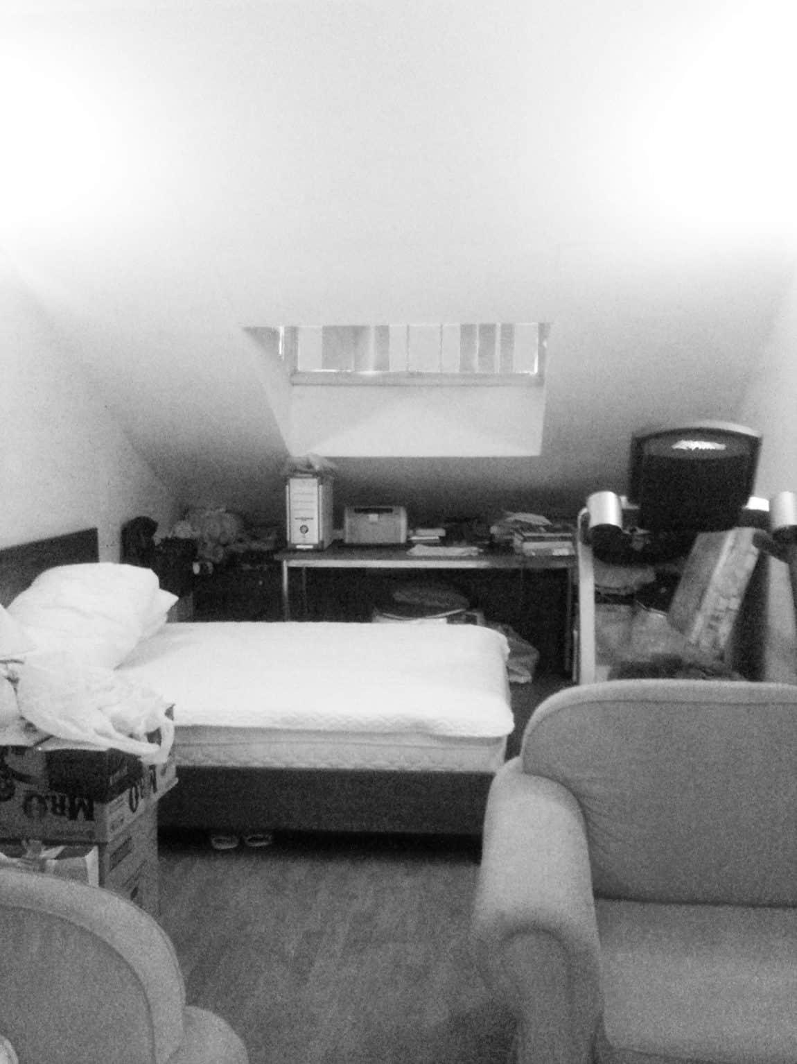 Attic Apartment by Tropikon (3)