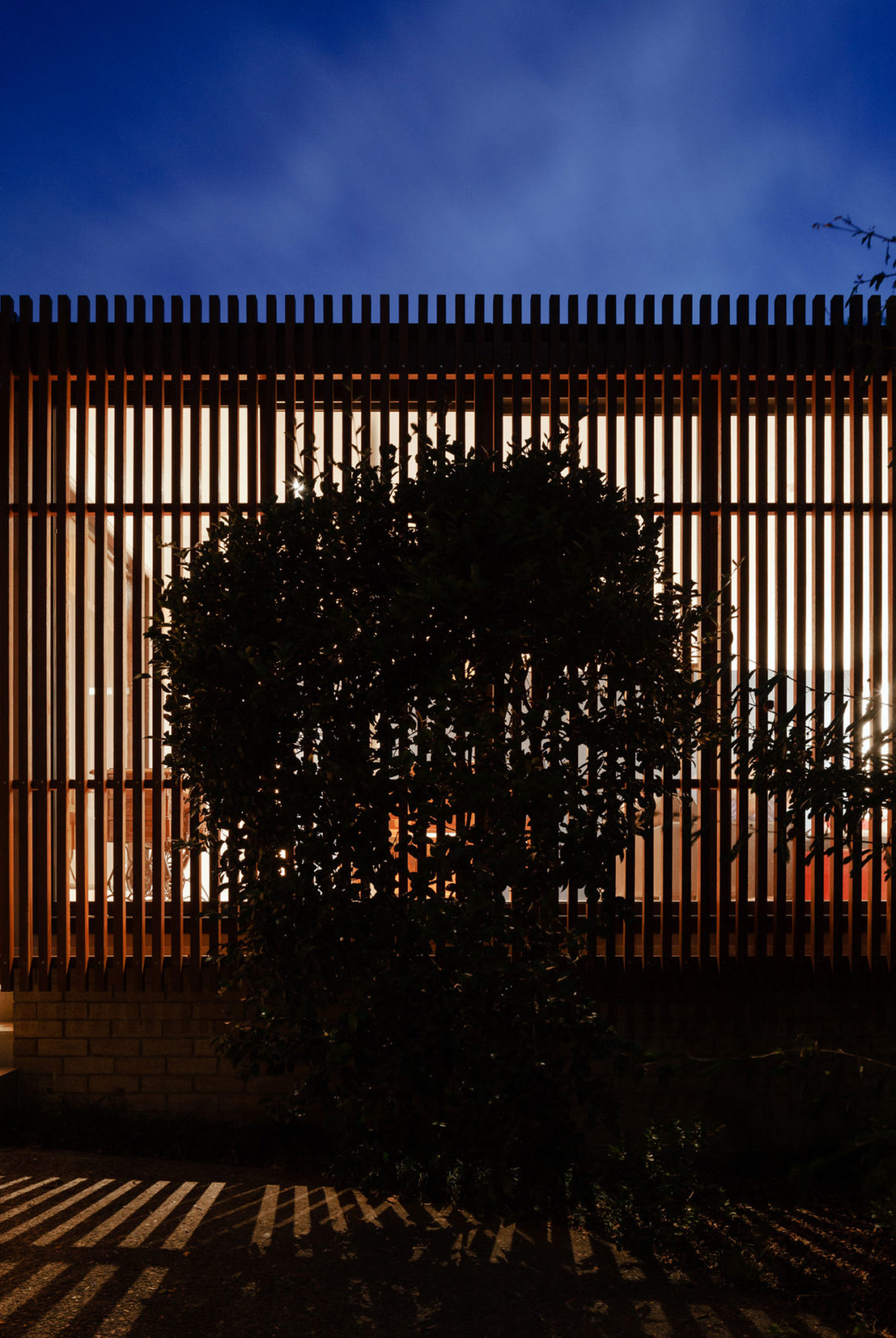 Escu House by Bijl Architecture (14)