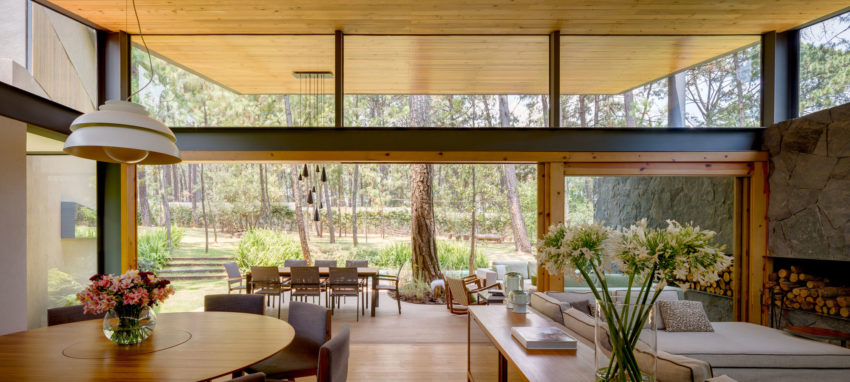 Five Houses by Weber Arquitectos (7)