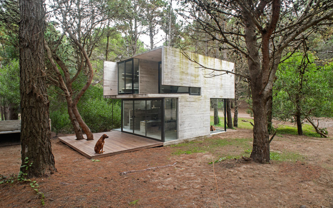 H3 House by Luciano Kruk (2)