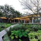 House in Constantia Valley by Metropolis Design (4)