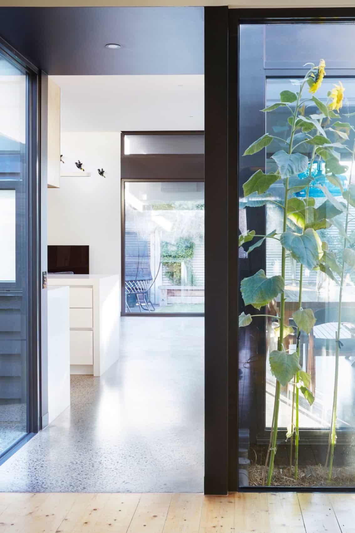 Pod House by Nic Owen Architects (3)